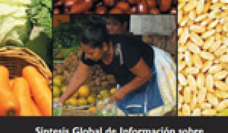 Síntesis Global de Información sobre Seguridad Alimentaria y Nutricional