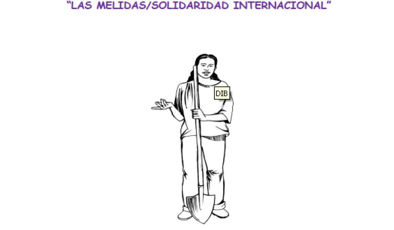5. Caja de Herramientas. HOJA DE RUTA para la transversalización institucional de género