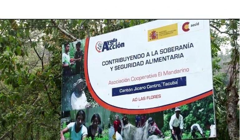 Video: Testimonios Cooperativa El Mandarino, en Tacuba, Ahuachapán.