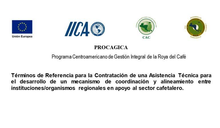 Contratación de una Asistencia Técnica para el desarrollo de un mecanismo de coordinación y alineamiento entre instituciones/organismos regionales en apoyo al sector cafetalero.