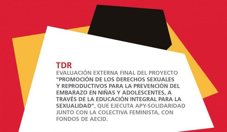 Términos de referencia para la contratación de la evaluación externa del proyecto Educación Integral para la Sexualidad (APY – CFDL)