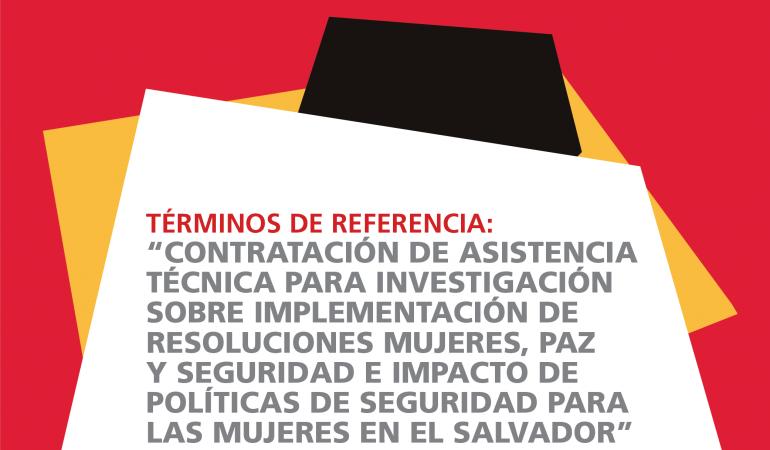 TDR investigación sobre la seguridad ciudadana de las mujeres