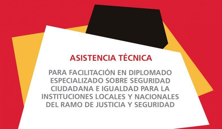 TDR: Asistencia técnica para facilitación en diplomado especializado sobre seguridad ciudadana e igualdad para la instituciones locales y nacionales del ramo de justicia y seguridad