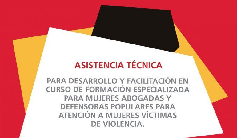 TDR: Asistencia técnica para desarrollo y facilitación en curso de formación especializada para mujeres abogadas y defensoras populares para atención a mujeres víctimas de violencia